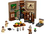 76384 LEGO Harry Potter Hogwarts Moment Herbology Class